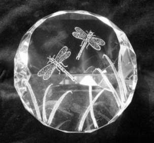 Optical Crystal Paperweight - Dragonflies